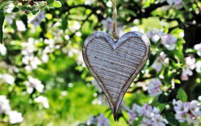 Volg je hart retraite dag-Zomer editie-20/06/2020